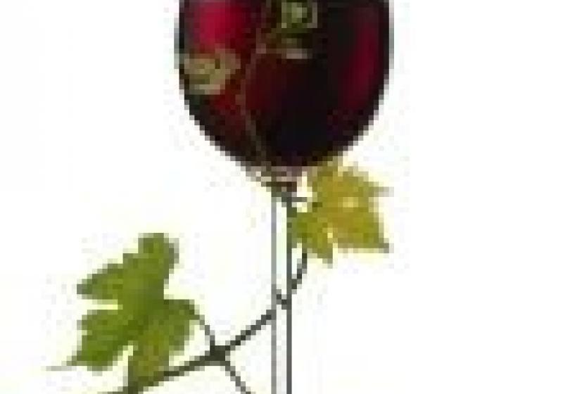 Historické vinobraní ve Znojmě