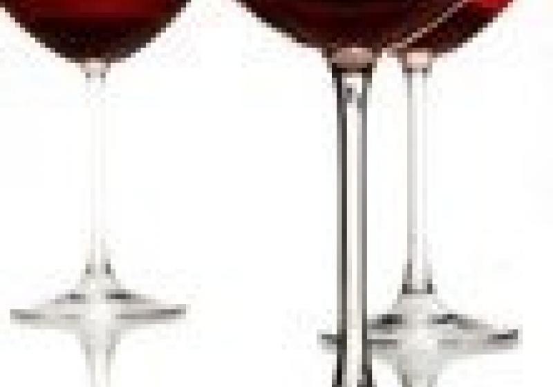 Tradiční košt svatomartinského vína v Brně