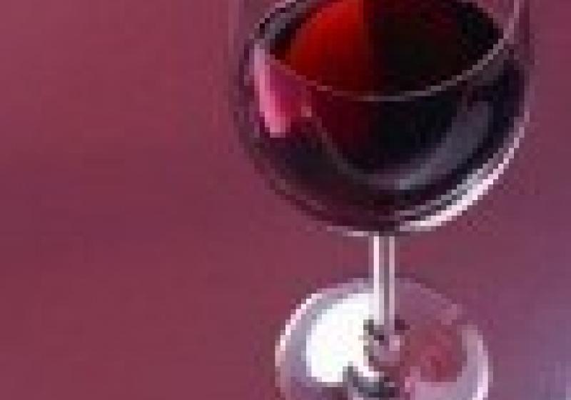 Martinská husa a mladé víno v Kojeticích