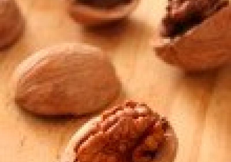 Jak na tvrdé ořechy
