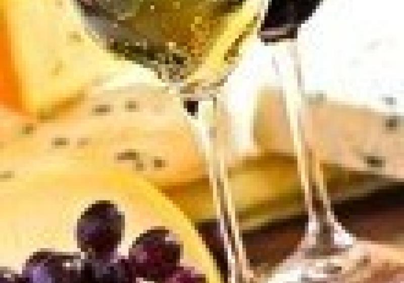 Degustace Svatomartinského vína v Ostravě
