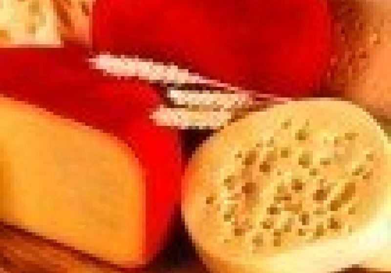 Ochutnávka holandských sýrů v Brně
