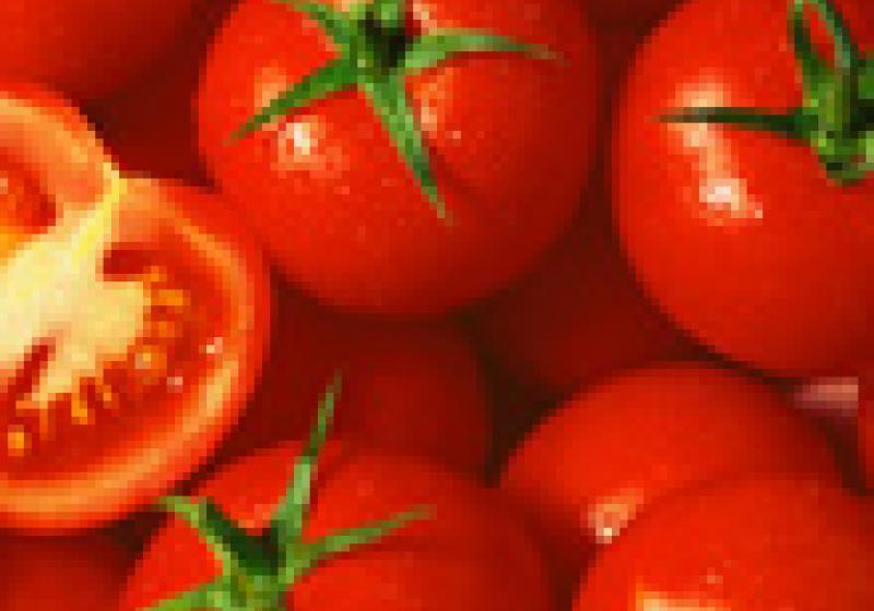 Jak rychle oloupat rajčata