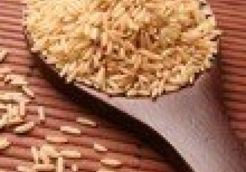 Přednáška o rýži a bulguru