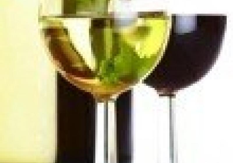 Degustace přívlastkových vín