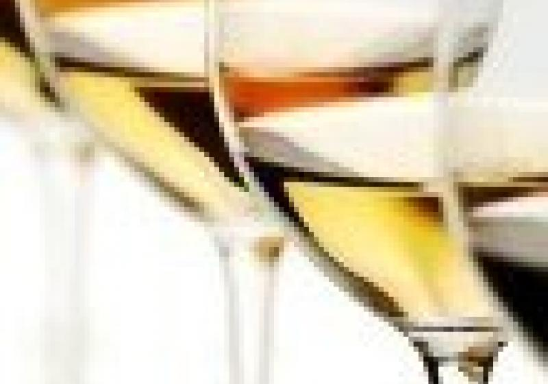 Degustace vín Reisten