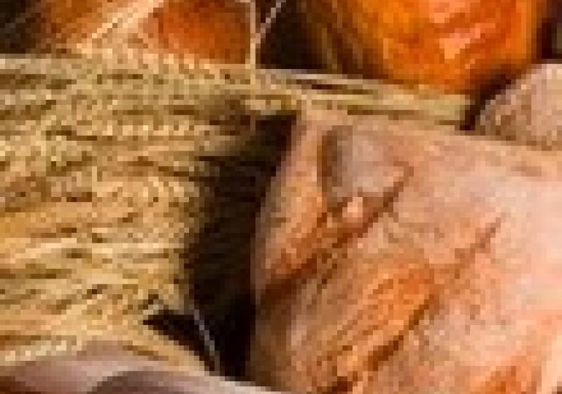 O Českou biopotravinu roku soutěžilo 39 výrobků