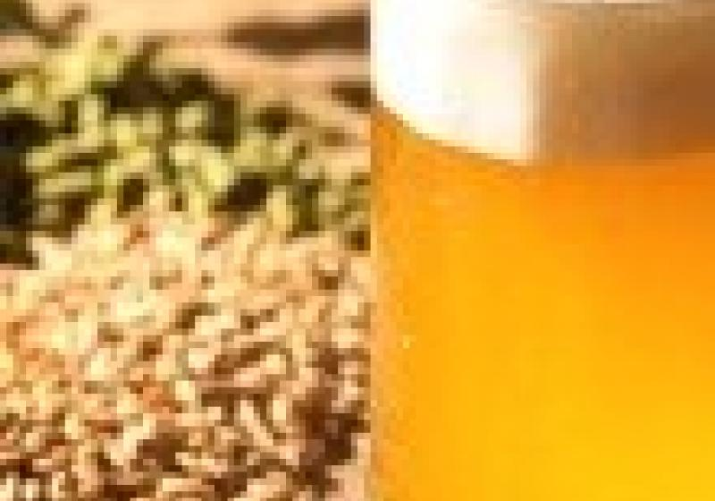 Pivo Zubr Classic vyhrálo Pivex
