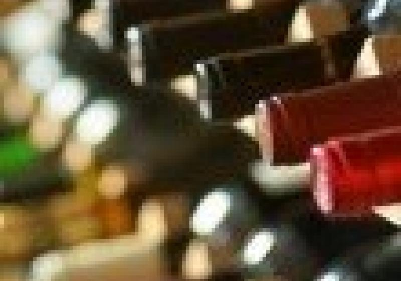 Tradiční výstava vín v Židlochovicích