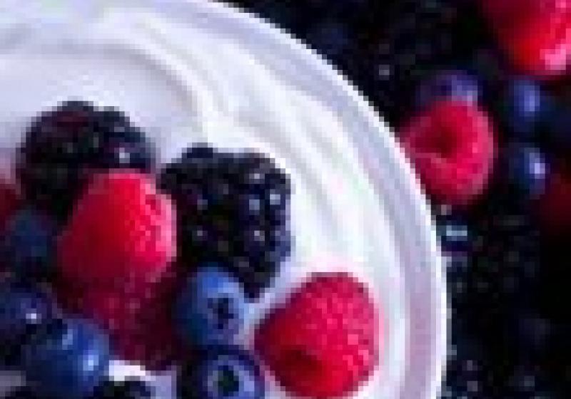 První yogurterie v Česku