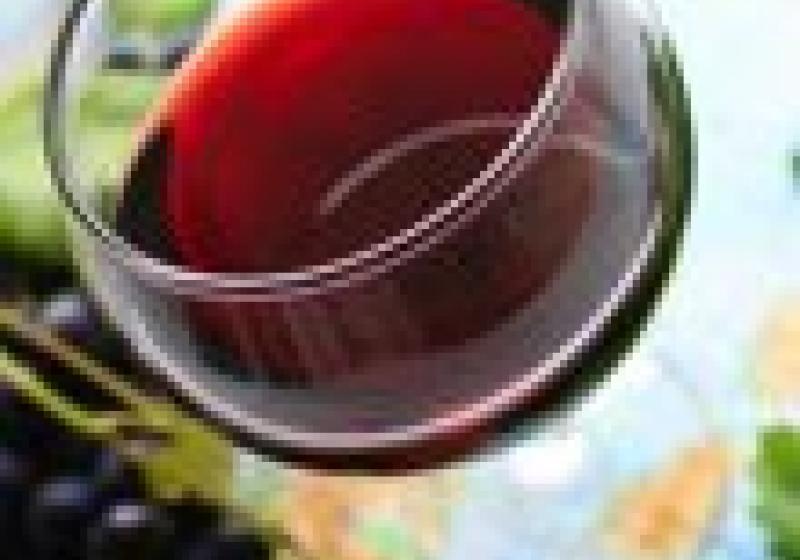 Italská vína doprovázejí českou kuchyni — 1. díl