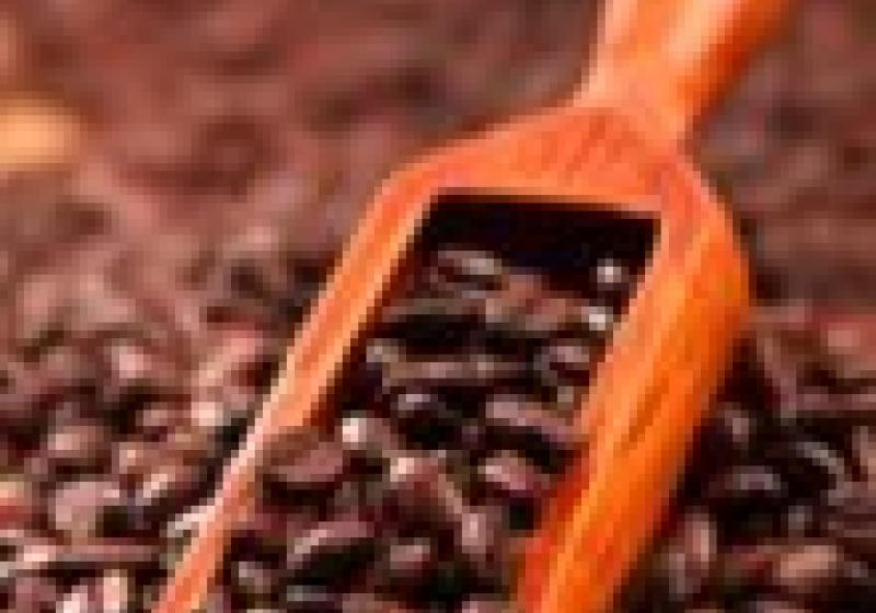Dezerty s kávovým nádechem