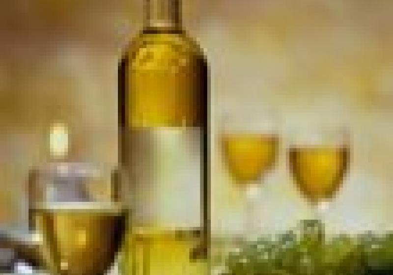 Povídání o víně v Brně