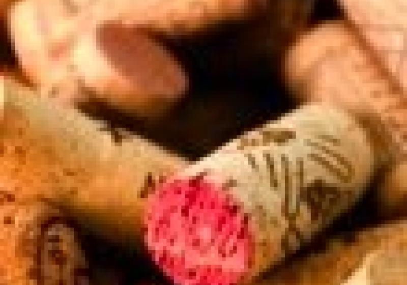 Festival španělských vín