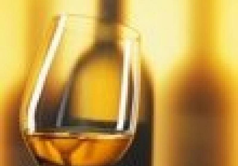 Biovína bodují ve vinařských soutěžích