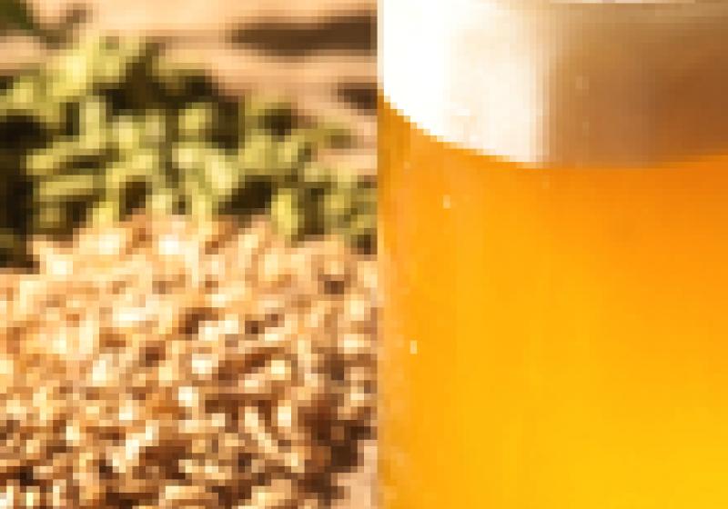 Třebíčské slavnosti piva