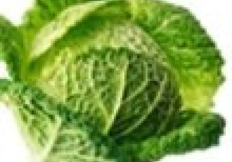 Trik pro vařené zelí