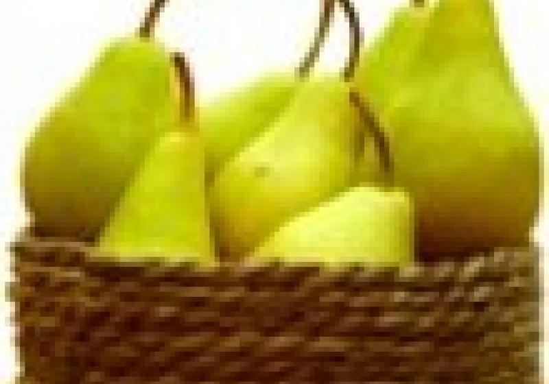 Biodožínky v Plzni navážou na farmářské trhy