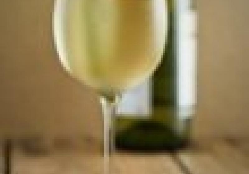 Vinaři se v září sjedou na Slovanský ostrov