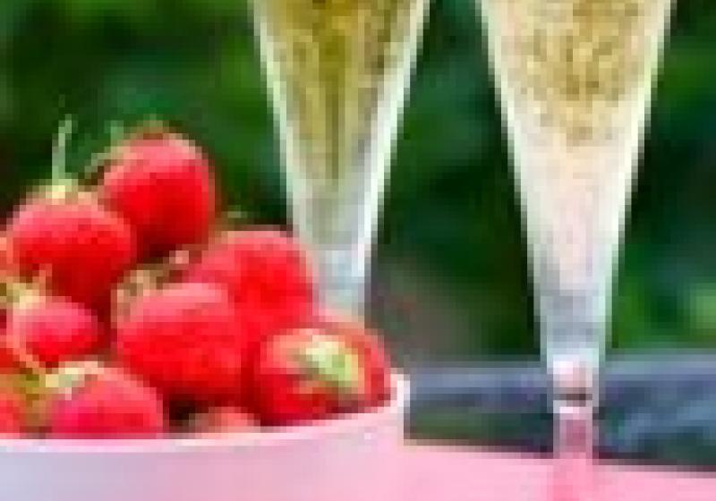 Champagne zahradní party