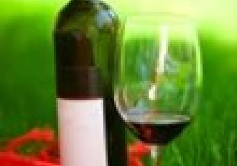 Degustace sedleckých vín