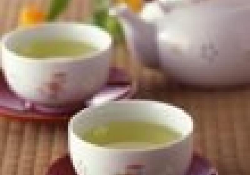 Čajový festival na Vyšehradě