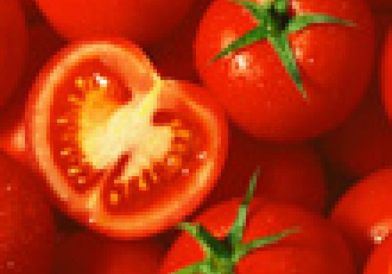 Co s kyselými rajčaty