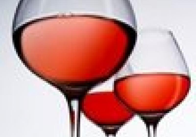 Degustace růžových vín