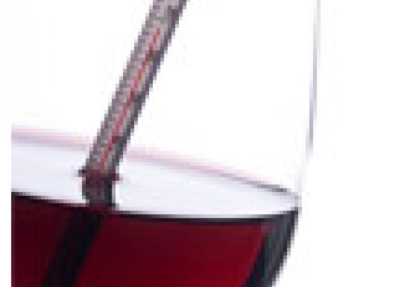 Jakou teplotu má mít víno?