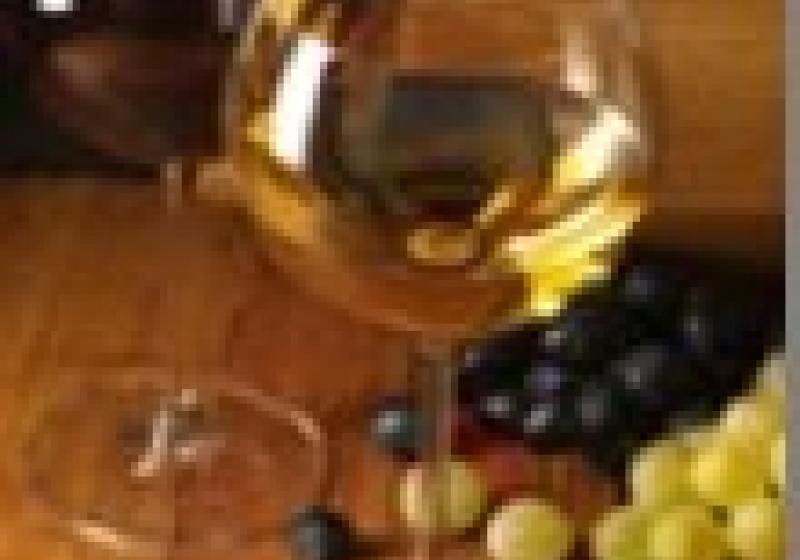 Zarážání hory s přehlídkou archivních vín