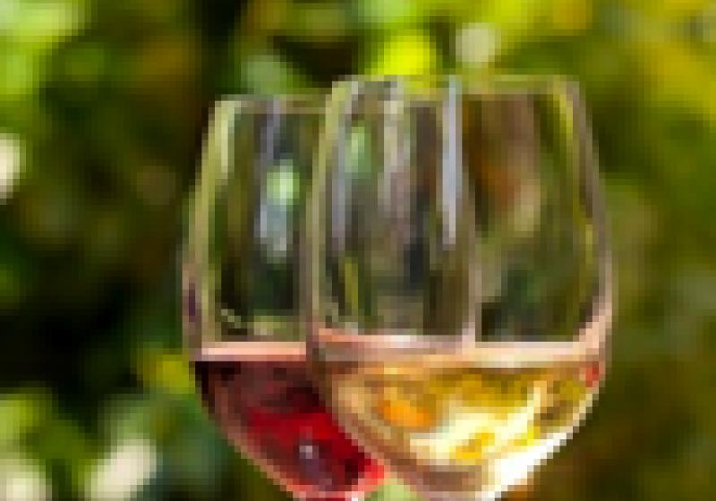 Horizontální degustace Bordeaux 2004