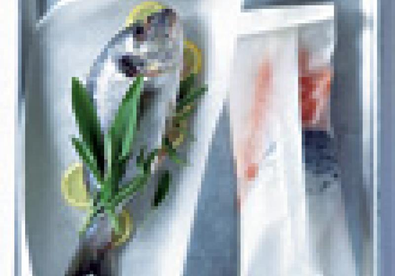 Ryby v papíru