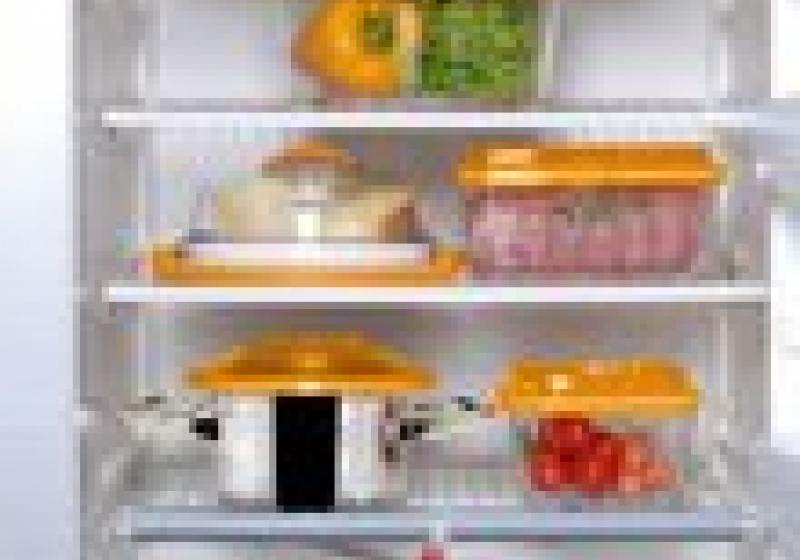 Vakuování potravin: Zbavte svou ledničku nebezpečných bakterií a plísní!