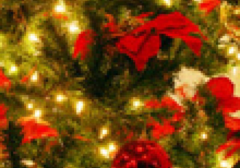 Vánoce v La Provence