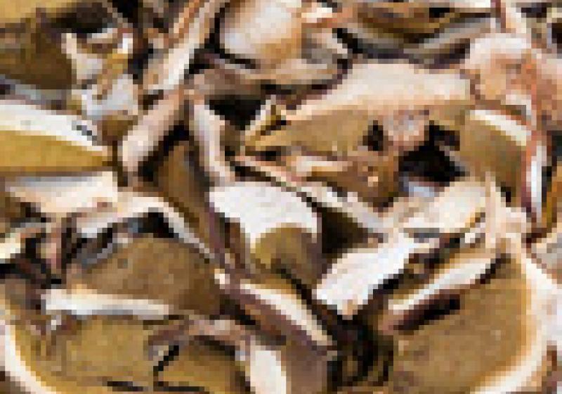 """Jak nejlépe """"obnovit"""" sušené houby"""