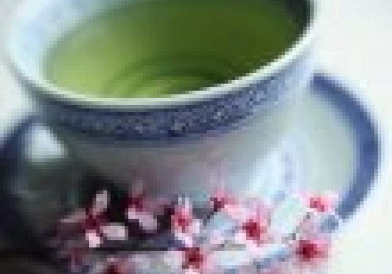 Dnes začíná Čajomír fest 2011