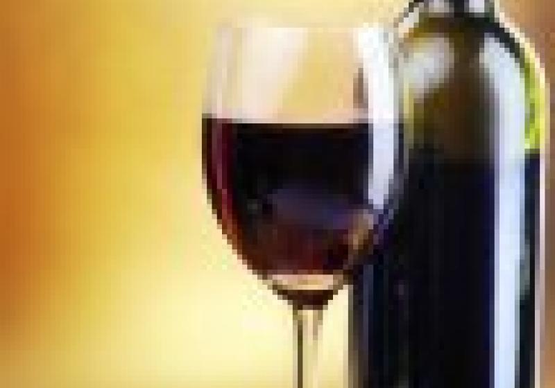 Tip na gastrovýlet: Táborský festival vína