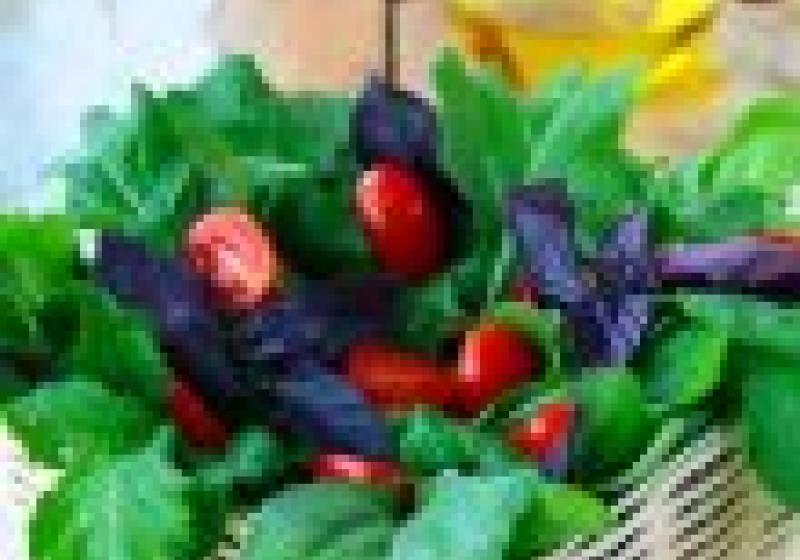 Jarní saláty