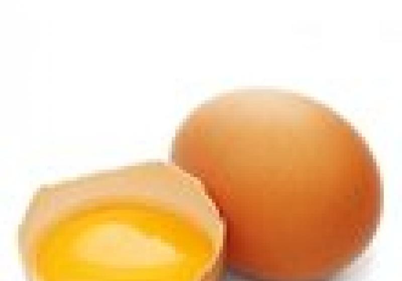 Pravda o vejcích