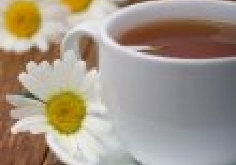 V neděli vyrazte na Čejkovické bylinkové slavnosti