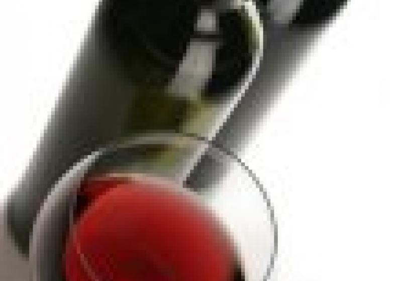 Akce pro milovníky vína: Galadegustace Wine4you