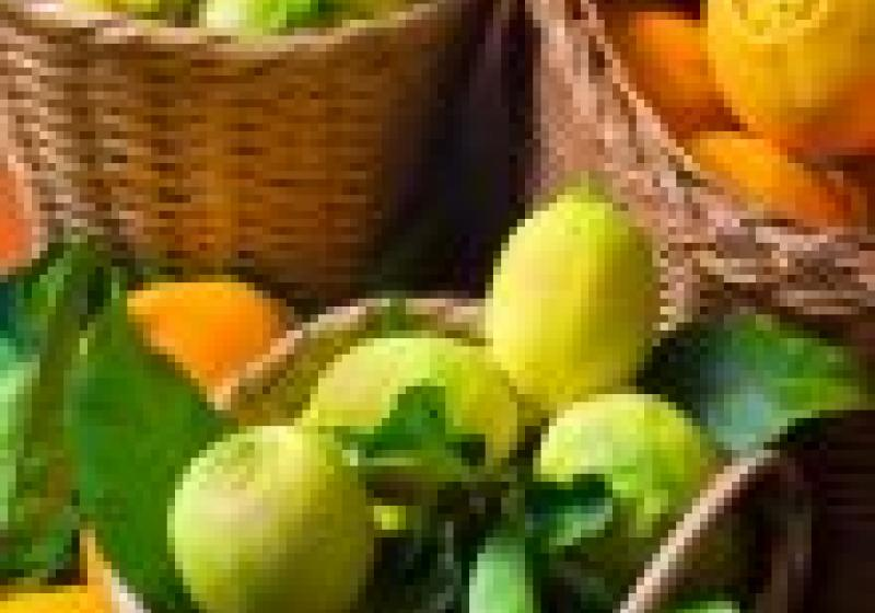 Vaříme s citrusy
