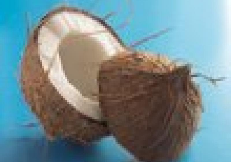 Co je dobré vědět o kokosu