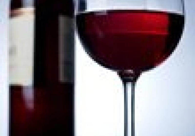 Nejlepším vínem je sauvignon od Vinselektu Michlovský