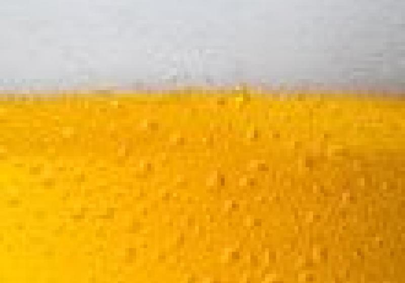 Nejlepší tuzemská piva: Medium, Mušketýr a Břežňák