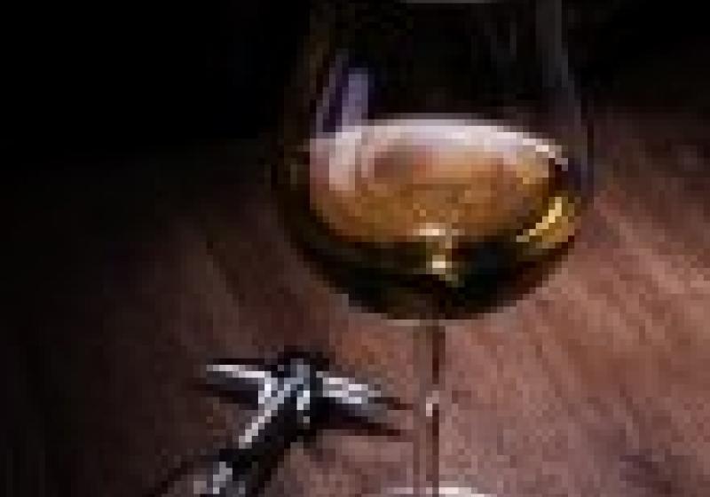 Putování za svatomartinským vínem III