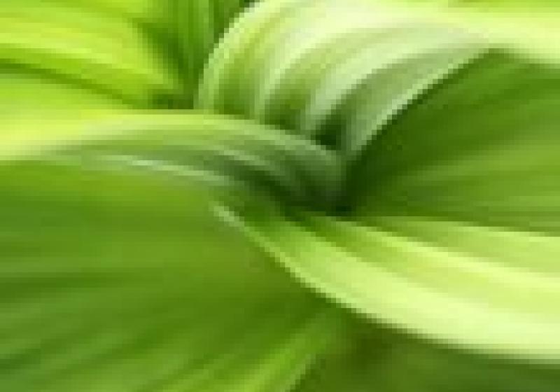 Více eko za méně peněz