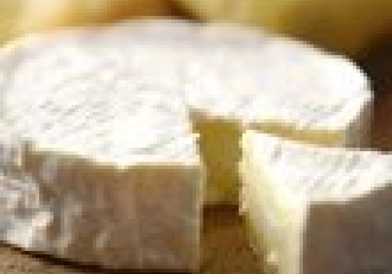 Jak zacházet se sýry