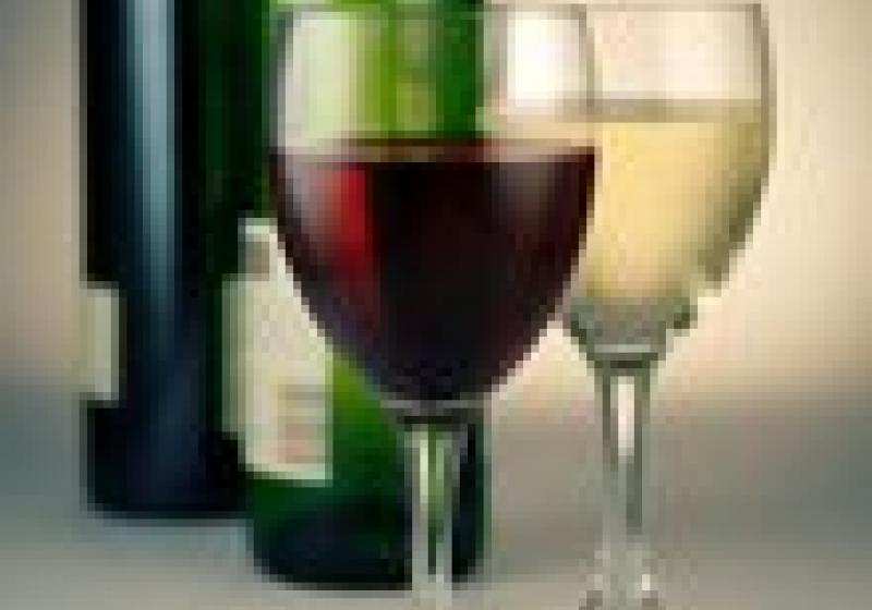 Degustace vín