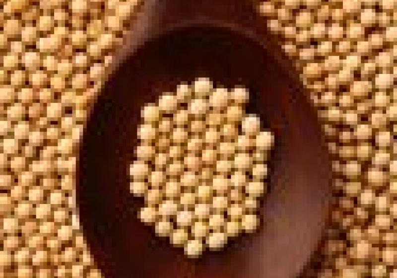 Jak déle uchovat sójové výhonky